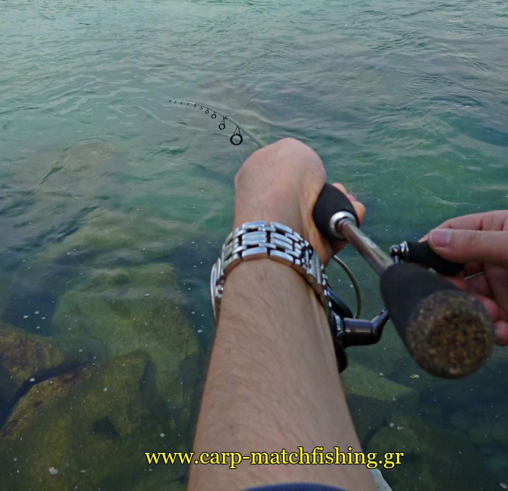 ajing-lrf-pleysi-gia-kokkalia-carpmatchfishing