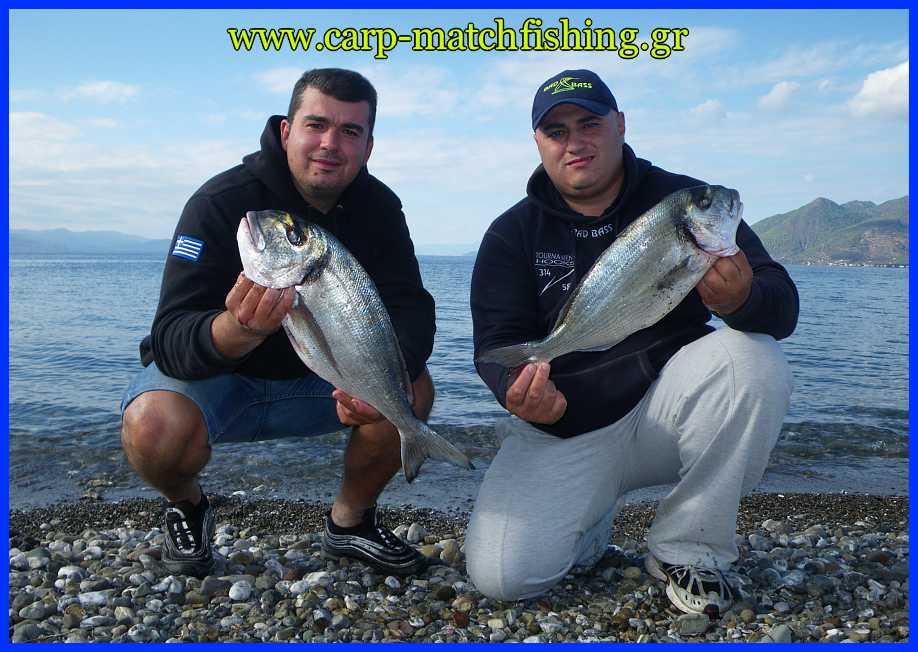 tsipoures-casting-2-carp-matchfishing-gr.jpg