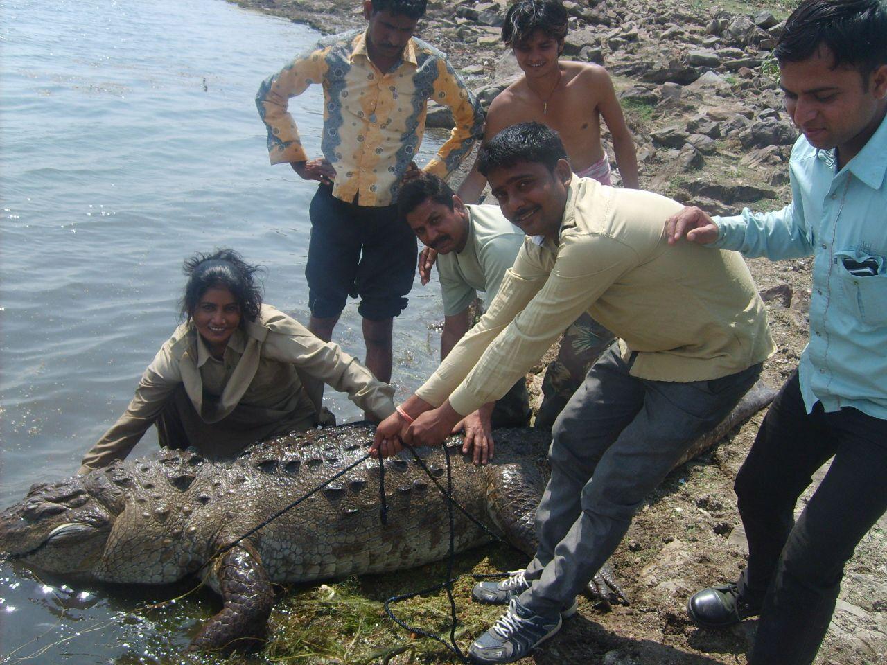 Ranger_crocodile Οι φύλακες της άγριας ζωής του πλανήτη   Ψάρεμα  - Συζητήσεις - Σκάφος