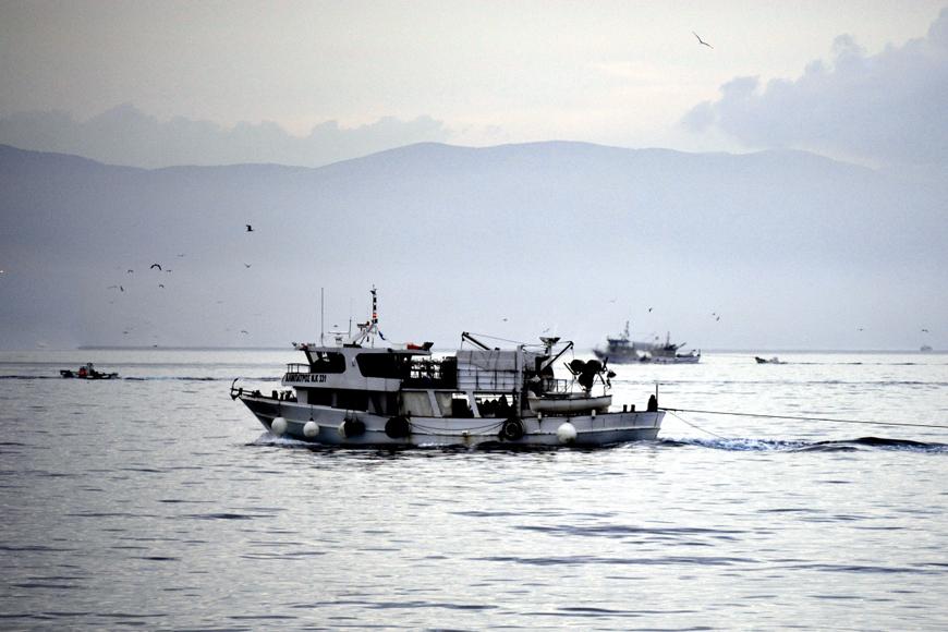 fisherman Νέα πνοή για την αλιεία στην Ελλάδα | Ψάρεμα  - Συζητήσεις - Σκάφος