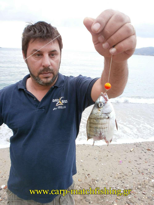 kommeno-psari-apo-gofari-carpmatchfishing