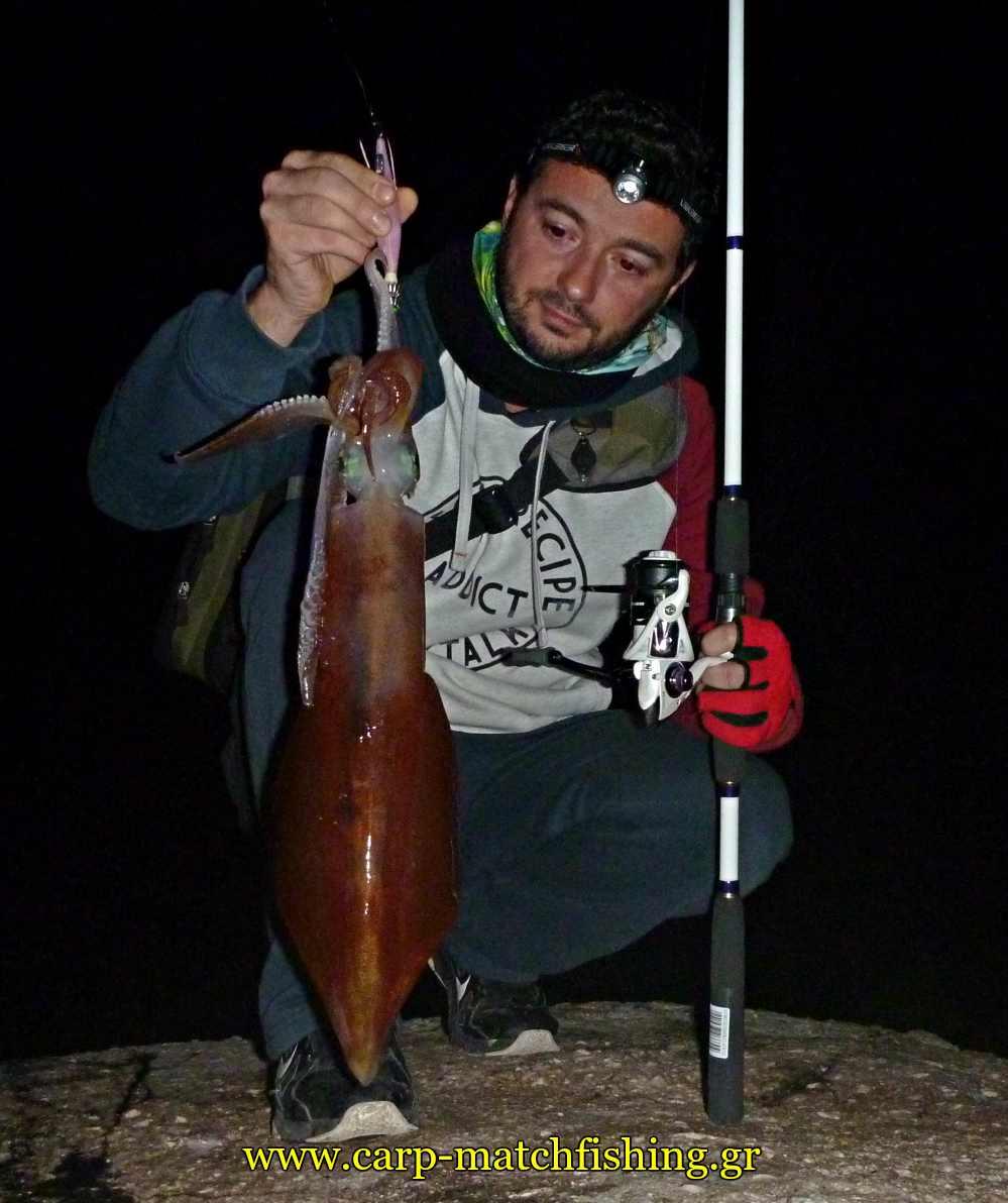 eging-big-squid-carpmatchfishing