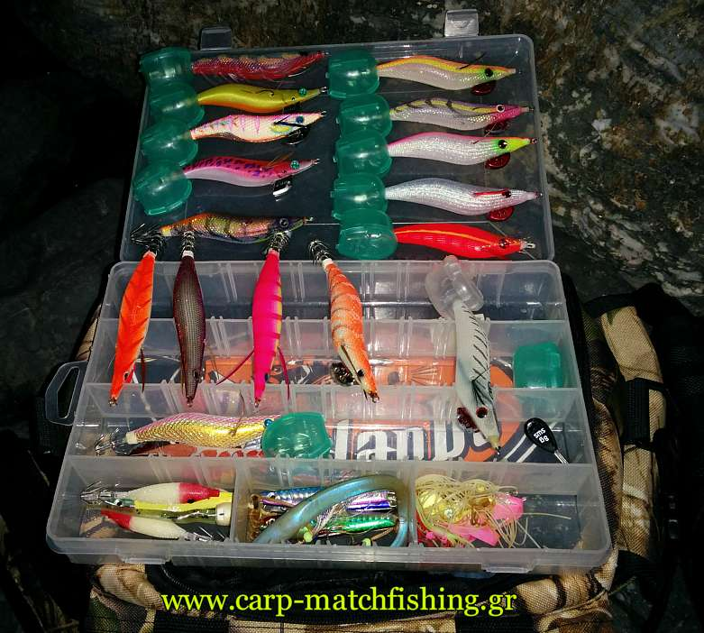 eging-alljigs-carpmatchfishing.jpg