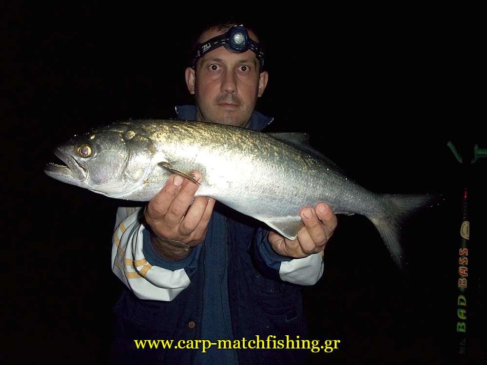 zaras-gofari-casting-carpmatchfishing