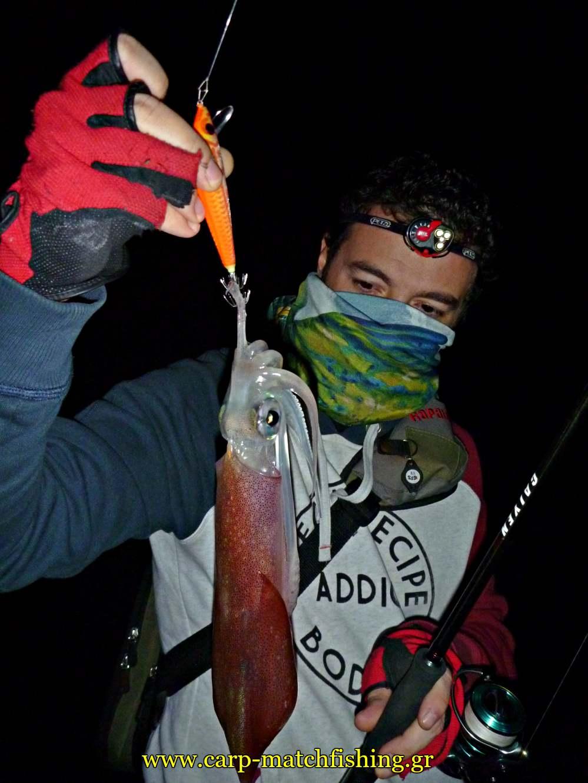 eging squid minnow jig sfaltos squid carpmatchfishing