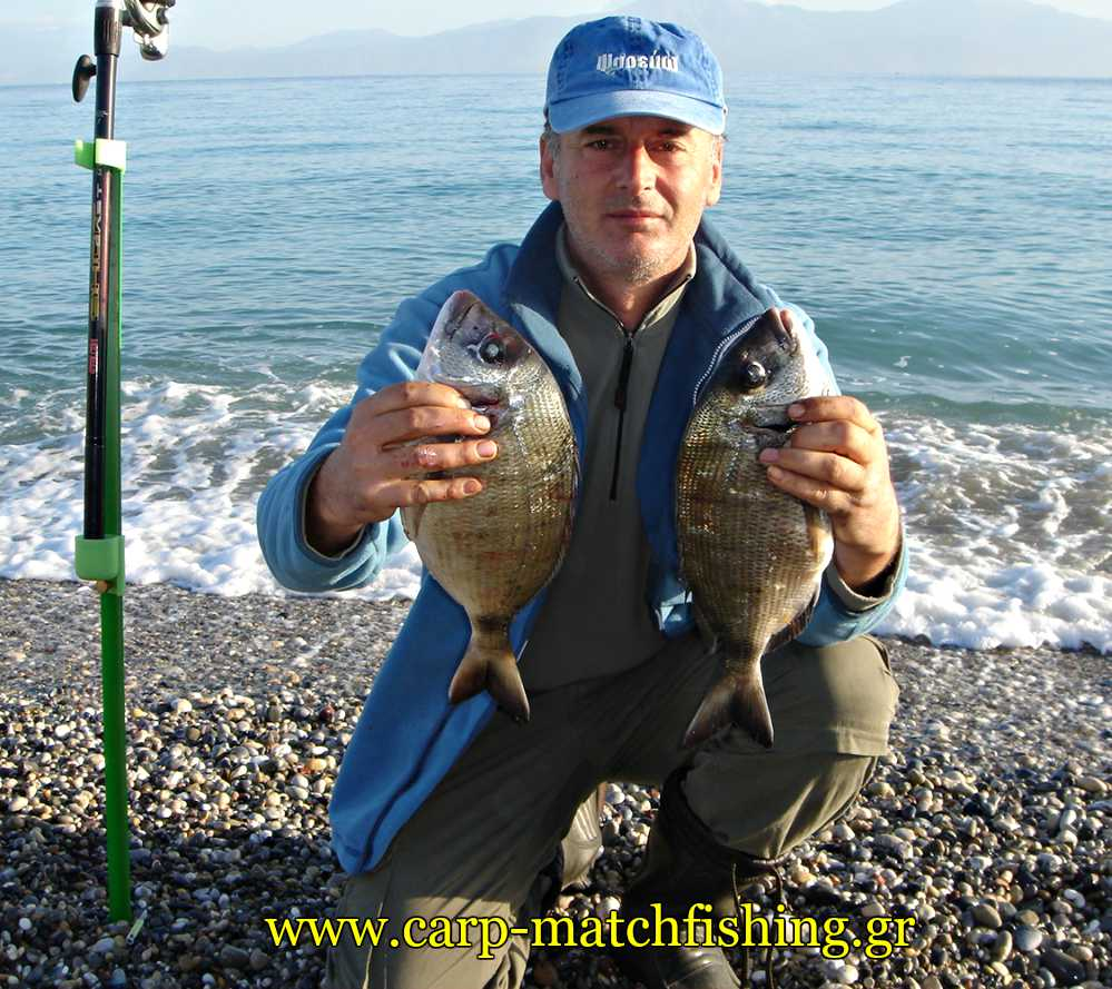 sargoi-korinthiakos-casting-2-carpmatchfishing