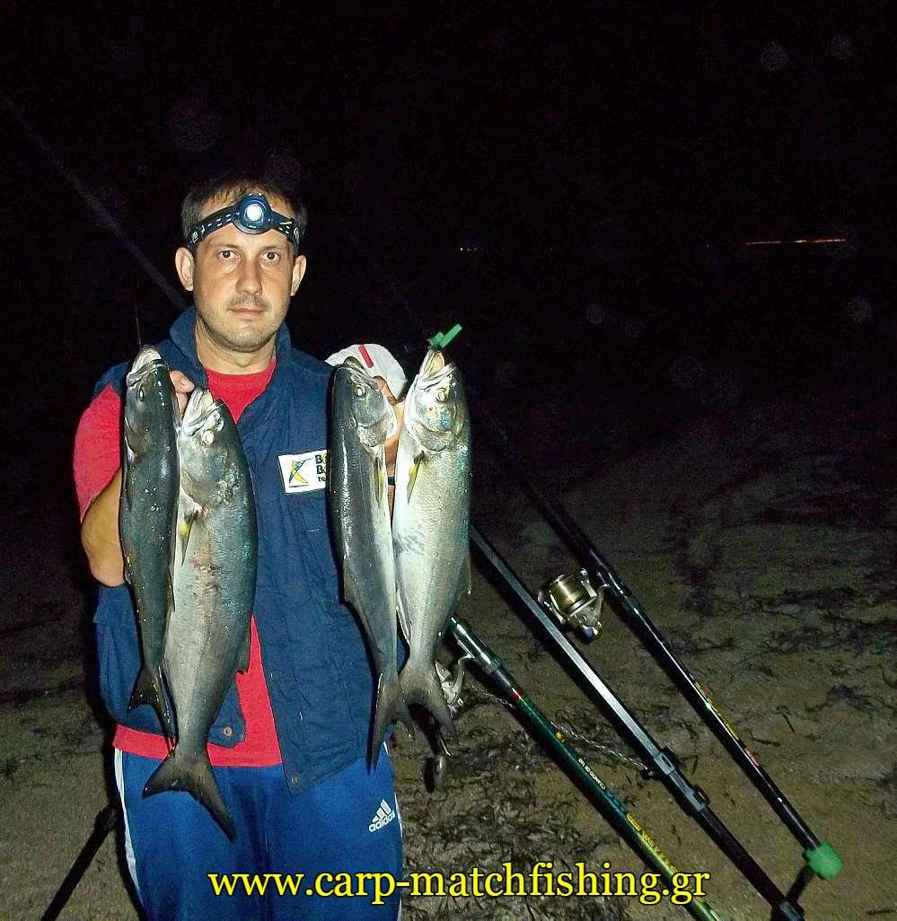 gofaria-zaras-casting-carpmatchfishing