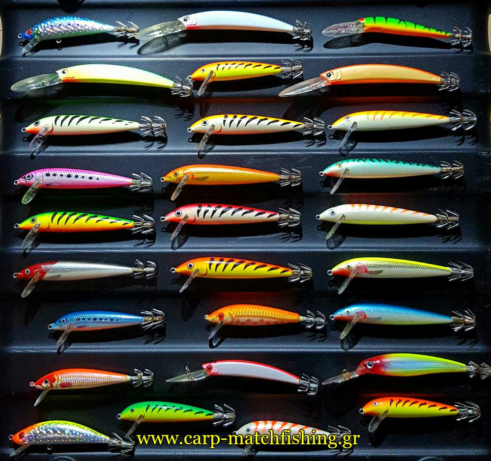 eging squid minnows carpmatchfishing