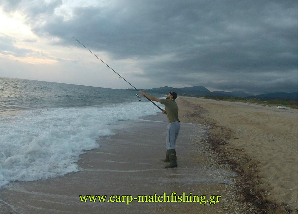 litses-spinning-carpmatchfishing.jpg