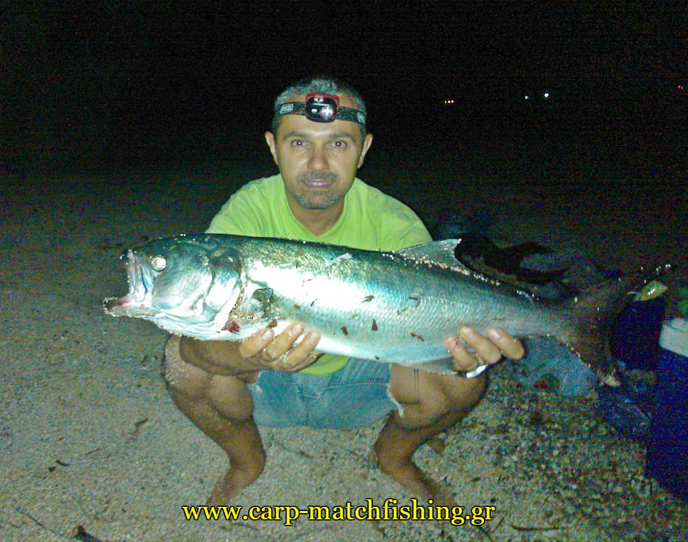 gofari-casting-kos-carpmatchfishing