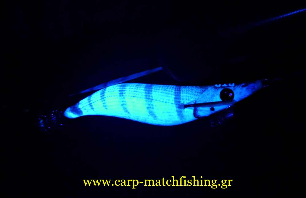 eging-glow-squid-jid-dtd-sargos-carpmatchfishing
