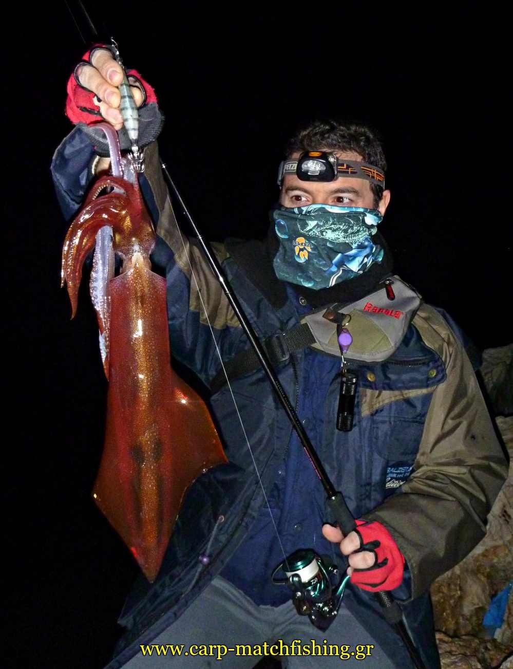 eging-sfaltos-squid-carpmatchfishing