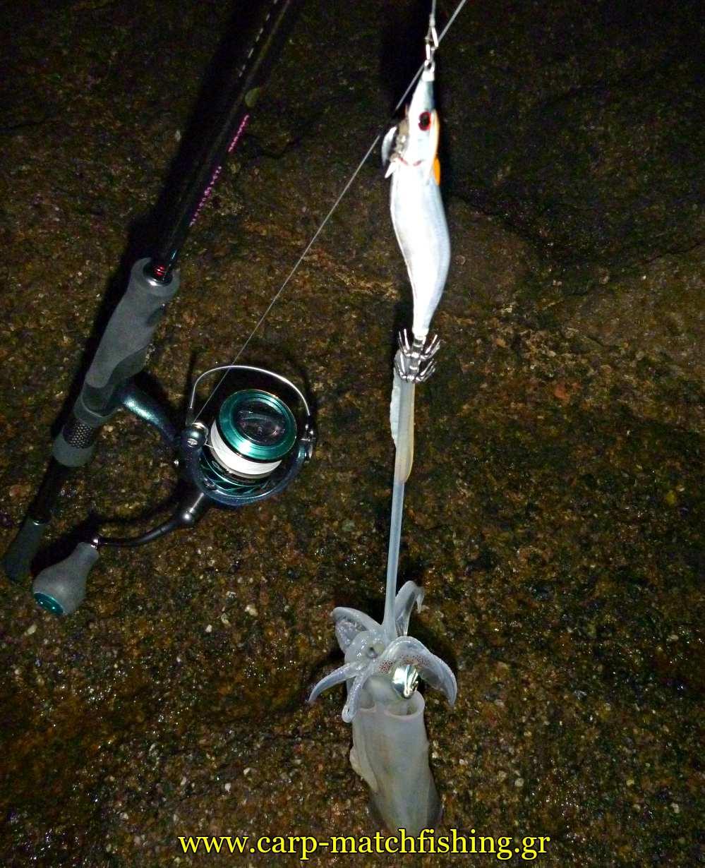 eging-smelt-jig-real-fish-dtd-carpmatchfishing