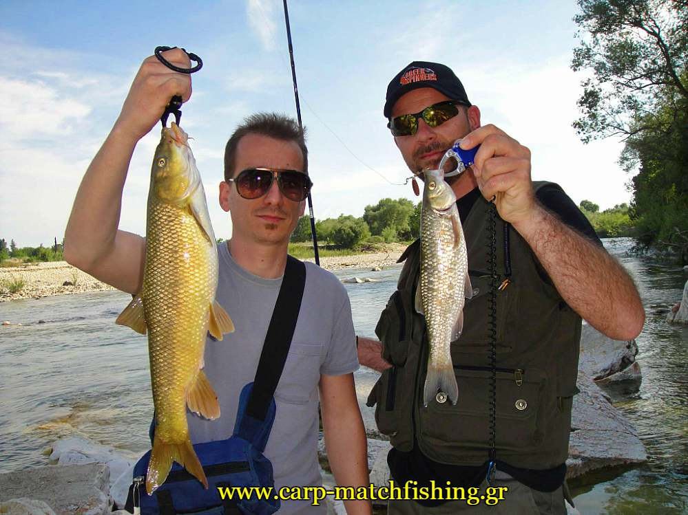 fish-grips-freshwater-spinning-carpmatchfishing