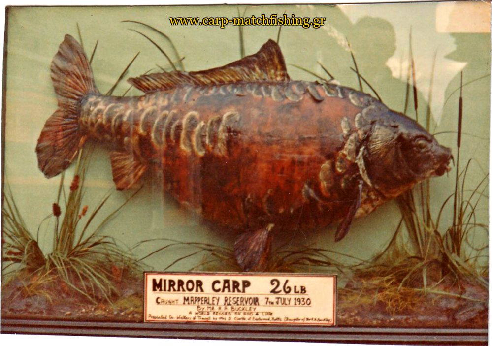 4-record-mirror-carp-legends-of-carpfishing-carpmatchfishing