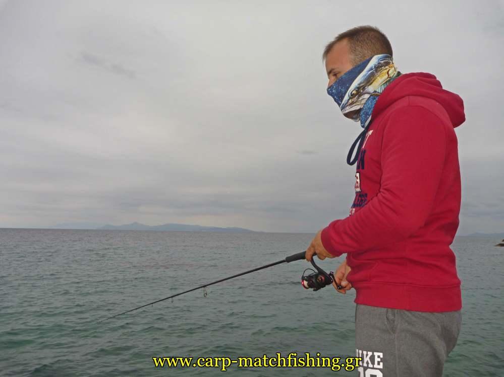 eging pleusi squid minnow jig carpmatchfishing
