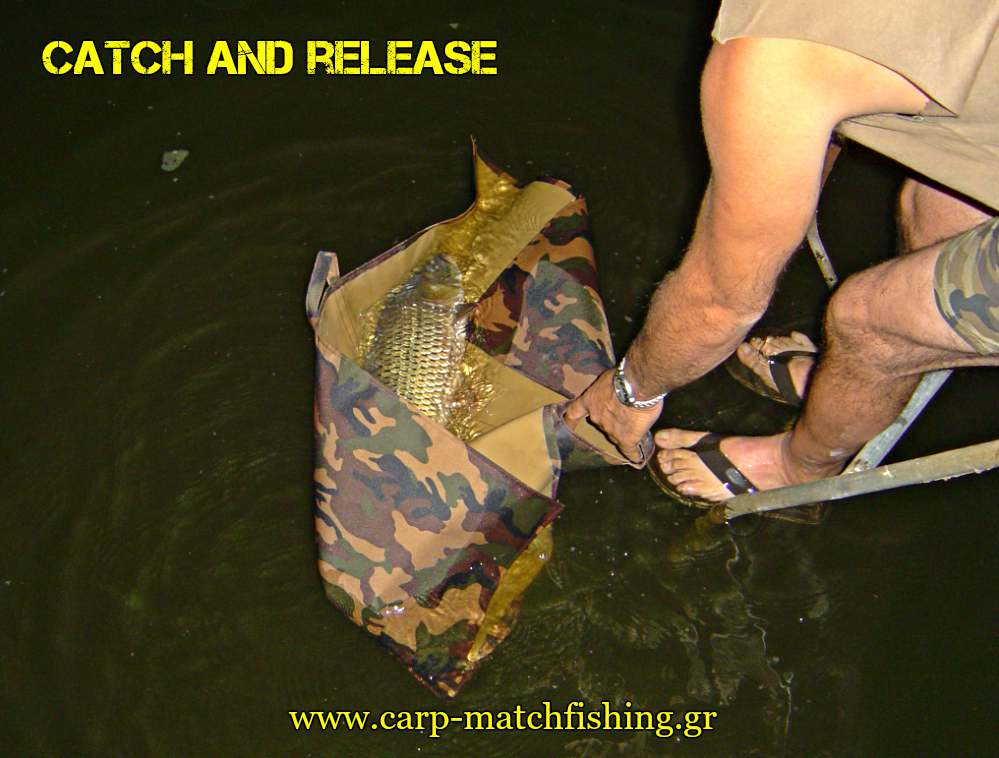 catch-and-release-carp-kastoria-carpmatchfishing