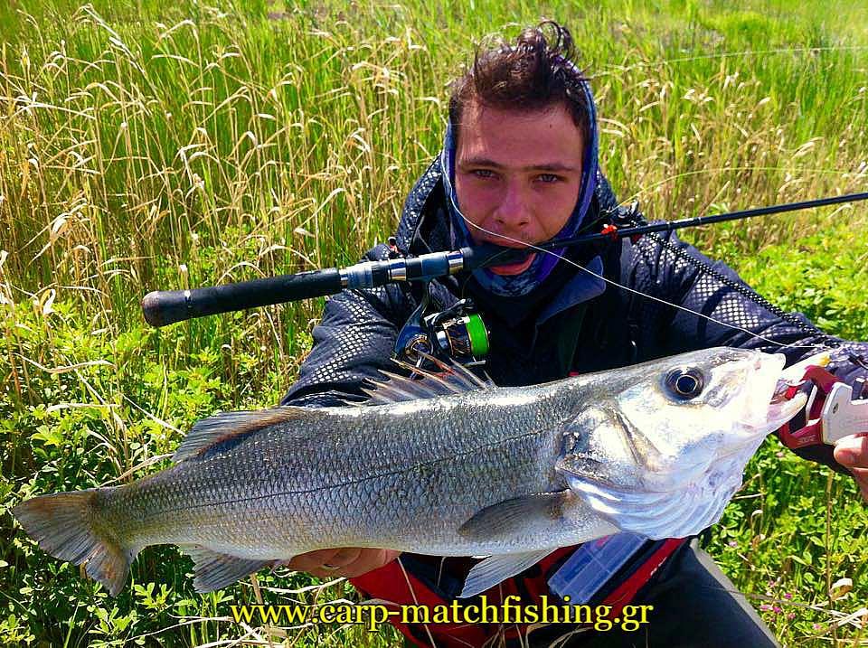 spinning-gia-lavrakia-se-ekvoles-potamon-carpmatchfishing