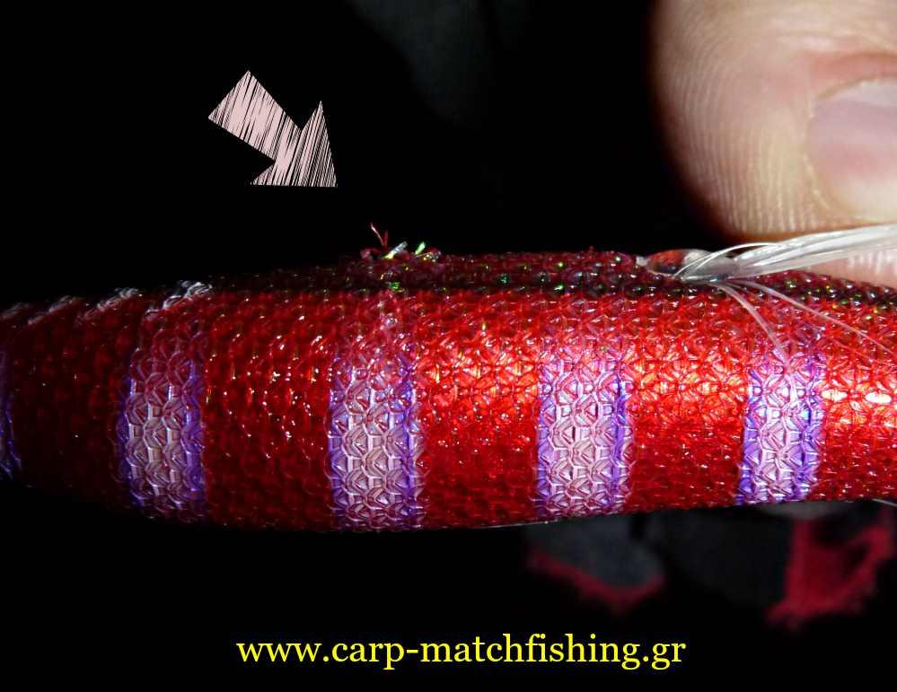 eging-squid-bites-carpmatchfishing