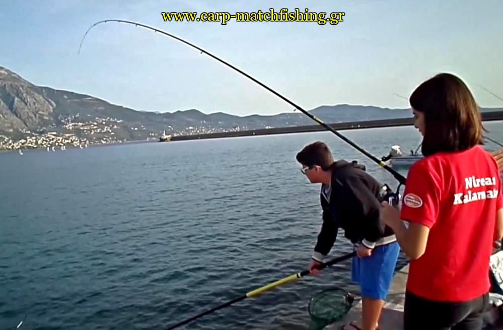 match-fishing-kefaloi-curve-rod-carpmatchfishing