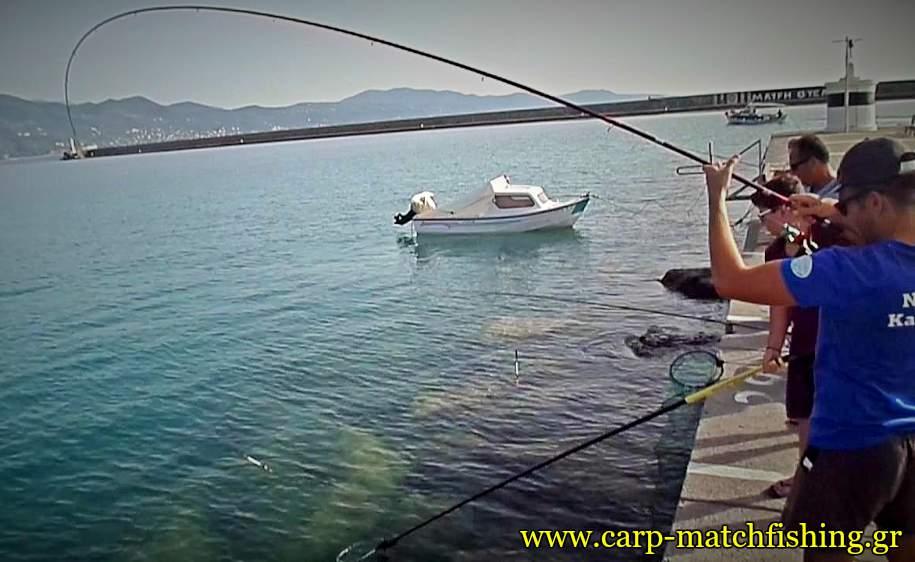 kefalos-match-fishing-big-curve-carpmatchfishing