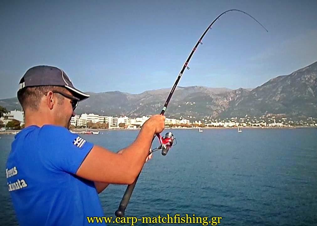 match-fishing-kefaloi-curve-rod-3-carpmatchfishing