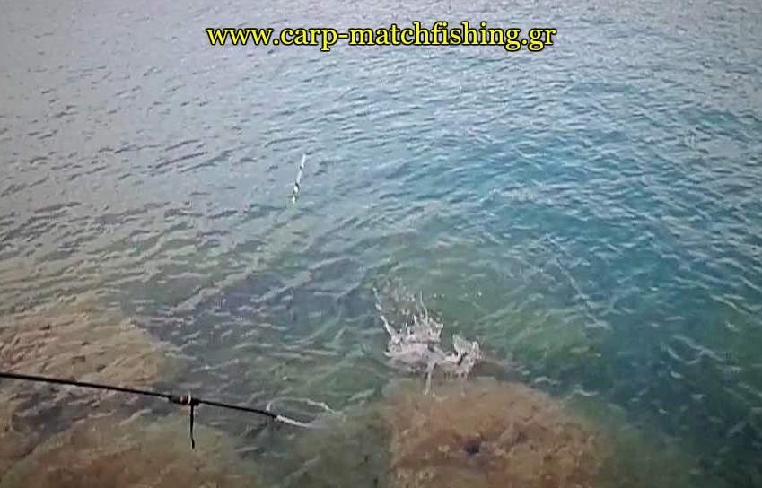 kefalos-apoxiasma-match-carpmatchfishing