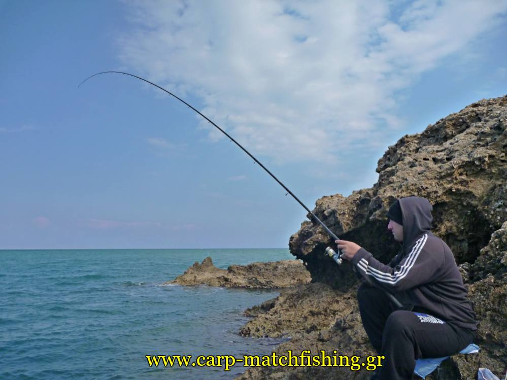 match fishing rod curve malagra angry fish carpmatchfishing