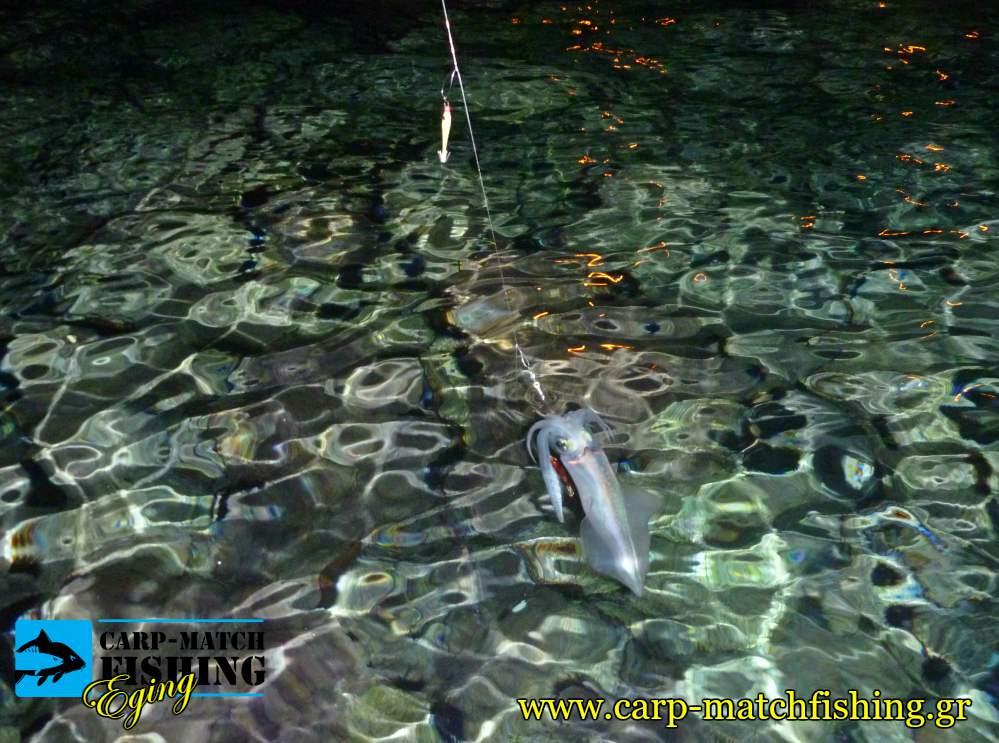 eging squid at sea topoi kalamarion psarema carpmatchfishing