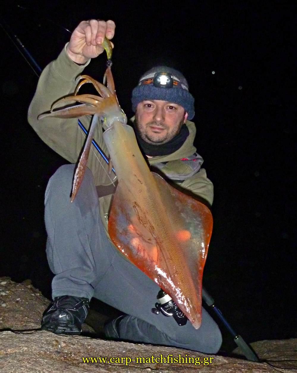 big squid sfaltos carpmatchfishing