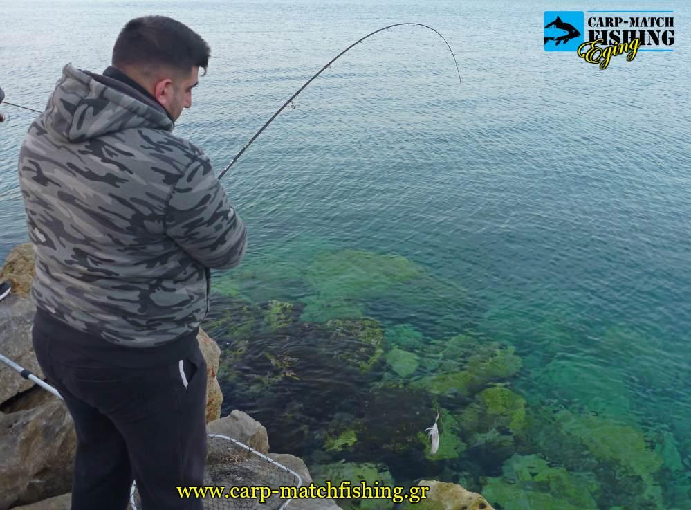 eging rocks geo squid hook topoi kalamarion carpmatchfishing