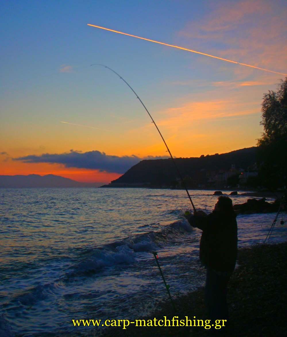casting lyismeno kalami carpmatchfishing