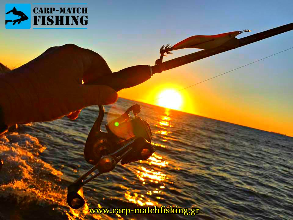 eging squid jig actions sunset rod carpmatchfishing