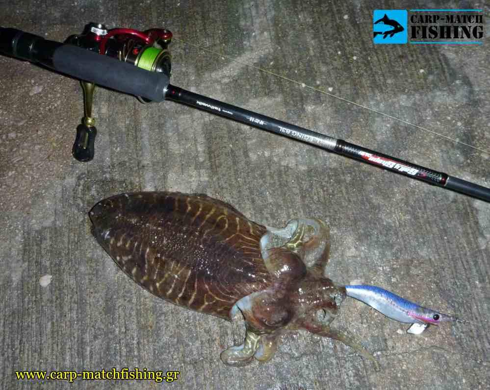 soupia eging rod natural jig carpmatchfishing
