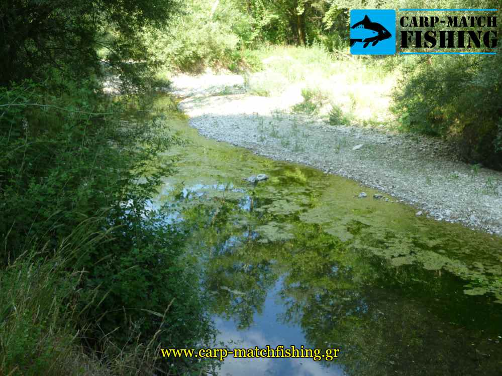 limazon ner se potami katastrofi carpmatchfishing