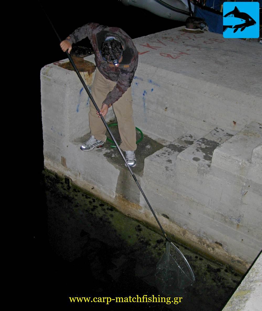 mazema zontanis garidas matchfishing carpmatchfishing