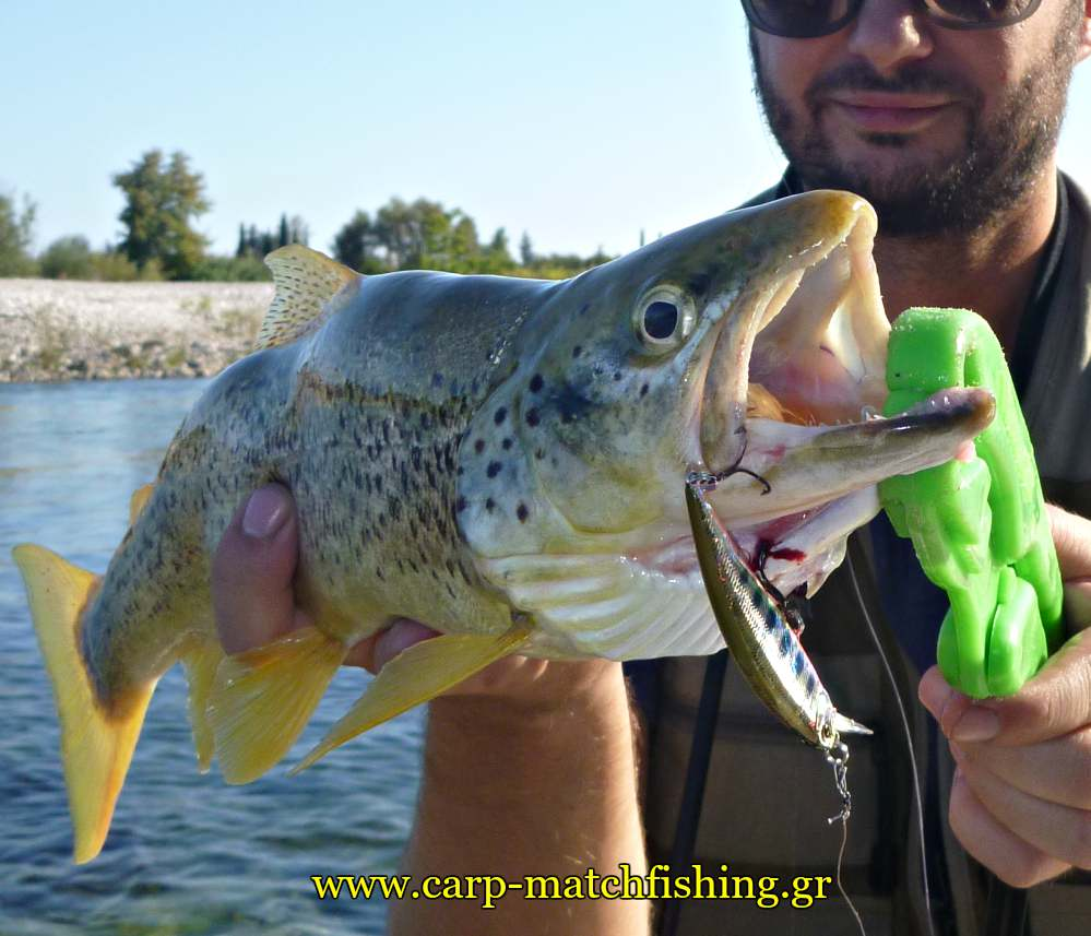 trout-fishing-lure-ryuki-carpmatchfishing-sfaltos