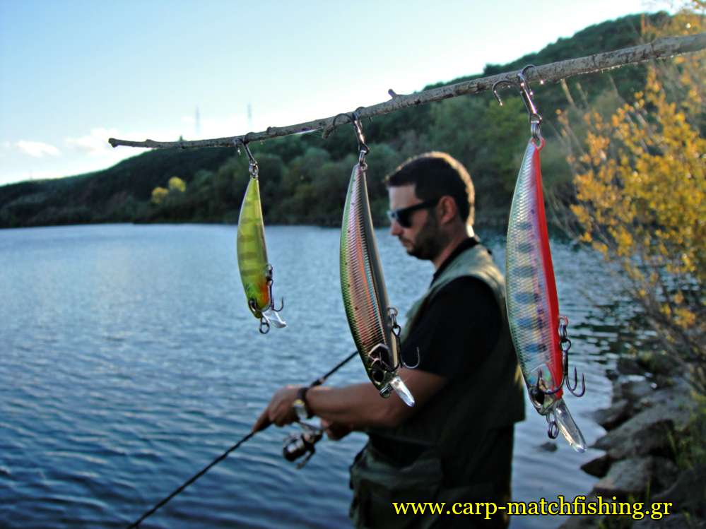 trout-fishing-lures-tree-spinning-carpmatchfishing