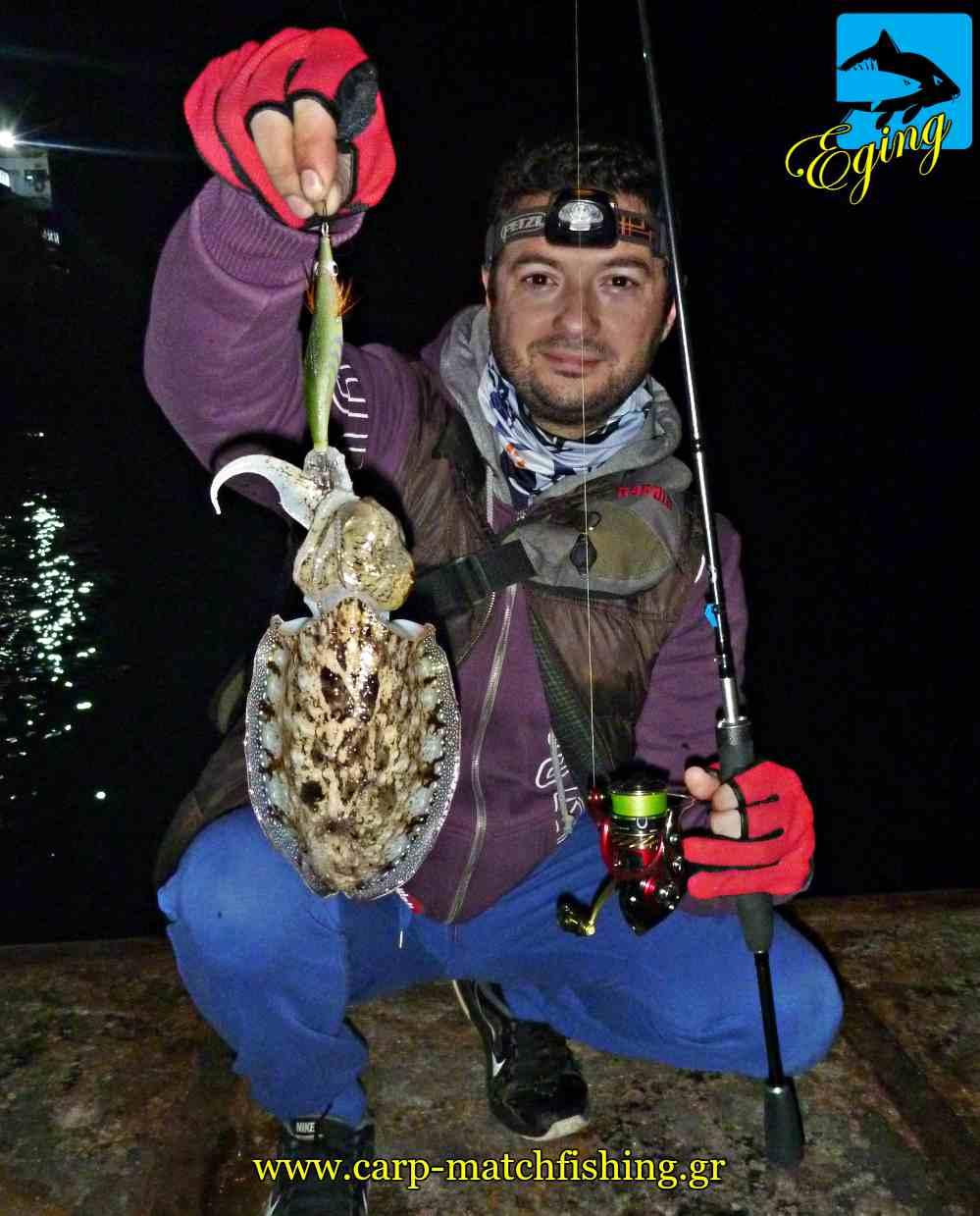 eging soupia cuttlefish sfaltos carpmatchfishing