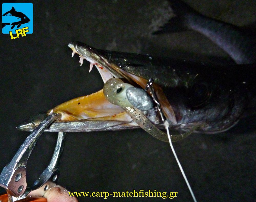 loutsos stoma silikoni grip light rock fishing lrf hrf carpmatchfishing