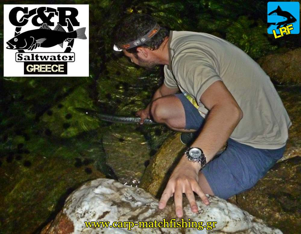 catch and release loutsos lrf light rock fishing carpmatchfishing
