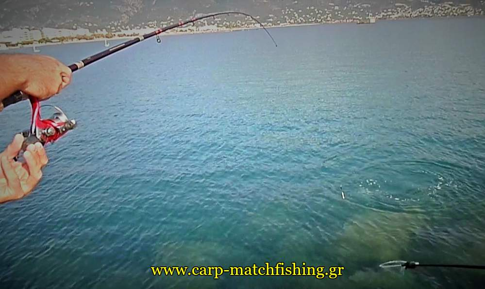 kefalos-apoxiasma-match-fishing-splash-carpmatchfishing
