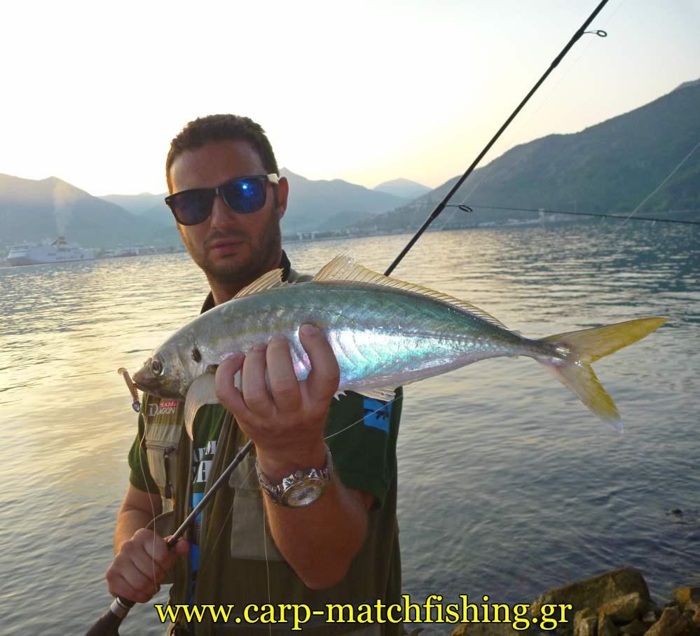 kokkali-malagra-angry-fish-ajing-light-rock-carpmatchfishing