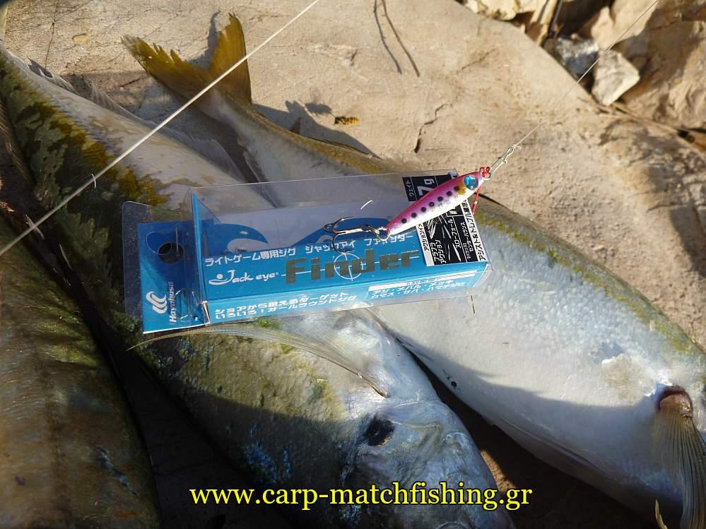 kokkalia-jig-ajing-carpmatchfishing