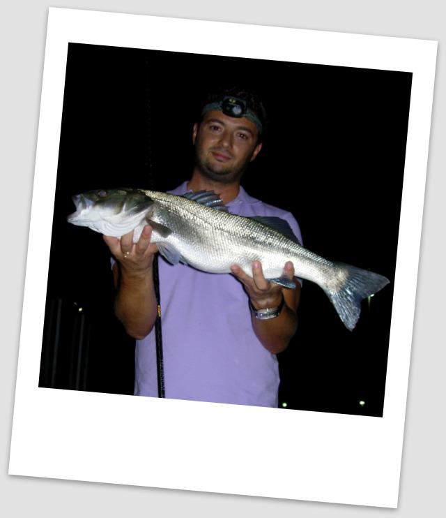 sfaltos-match-fishing-labraki