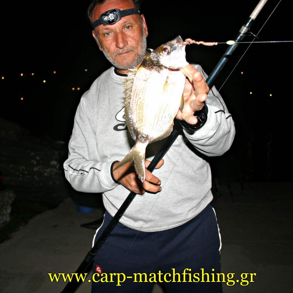 kythnos-sargos-kalafatas-carpmatchfishing