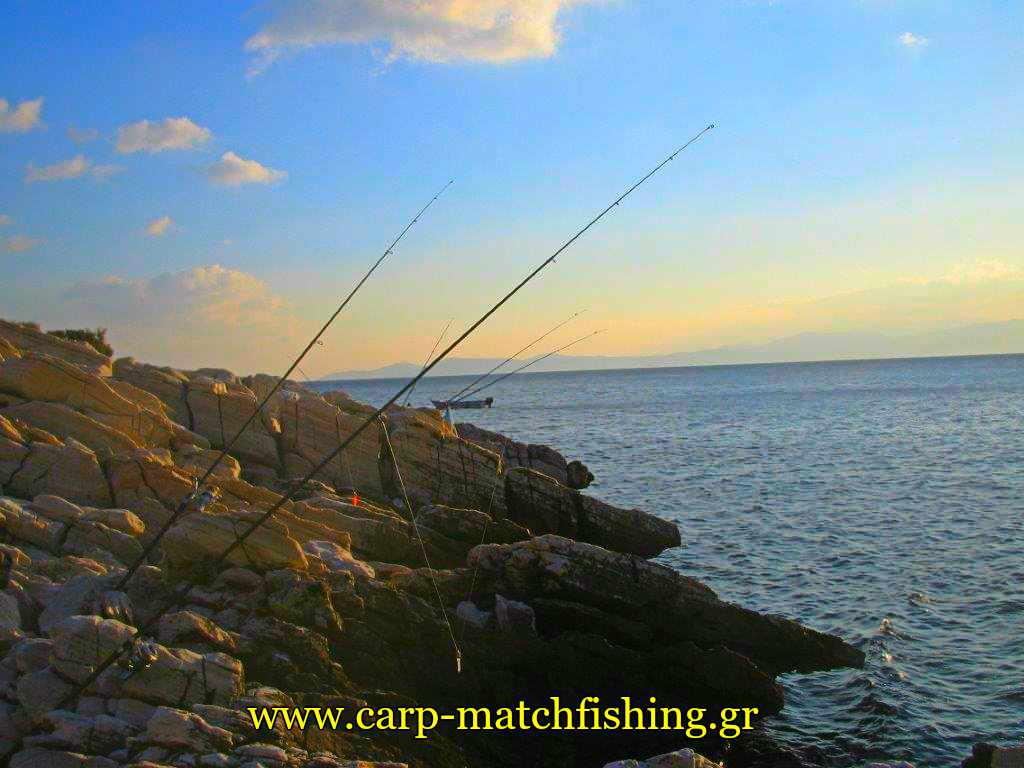 kalamia-casting-sunset-rods-carpmatchfishing