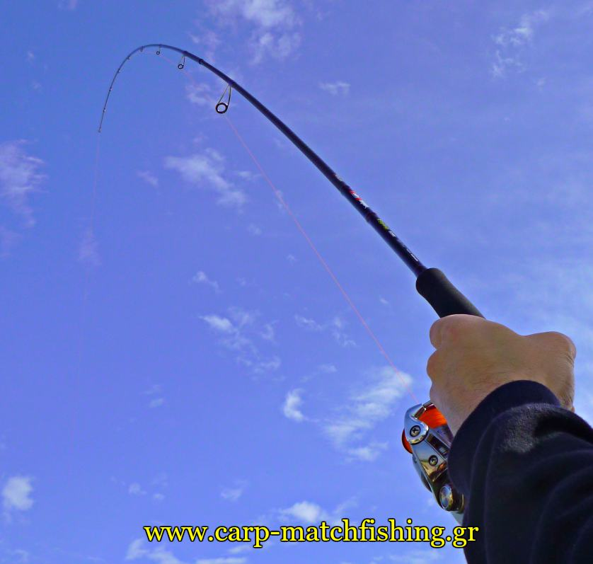 rod-protection-curve-carpmatchfishing