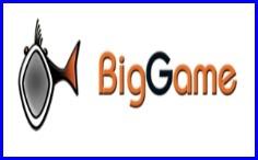 biggame logo