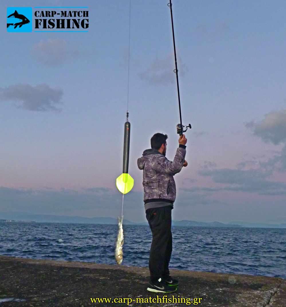 psarema palamidas predator float voli carpmatchfishing